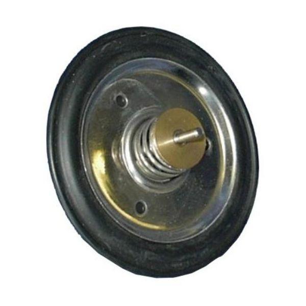 Diaphragm (MCB2255)